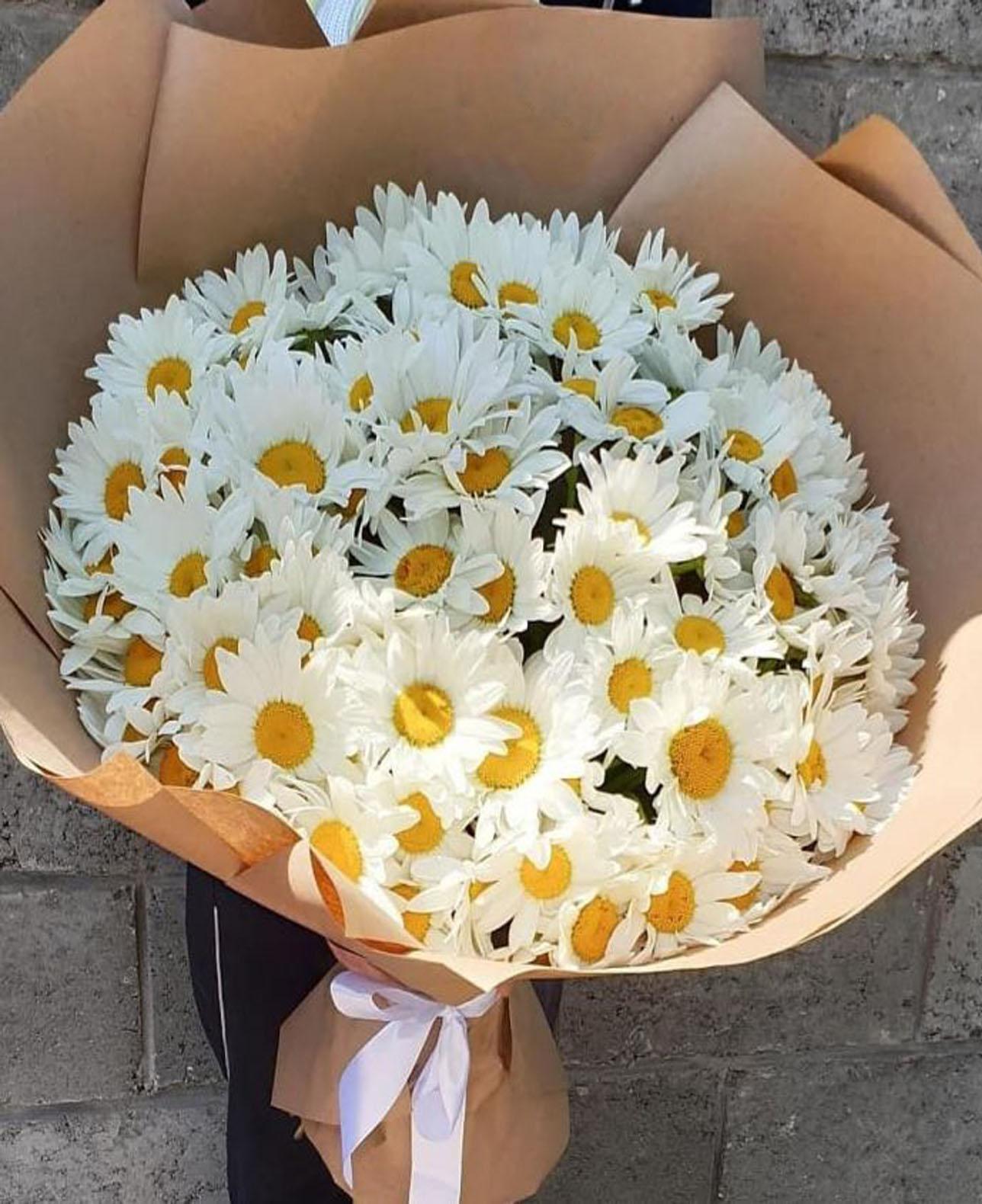 Доставка цветов одесса ромашки минск